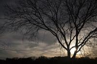 Greenbelt Sunset by Jason Smith