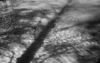 Reflection Pool by Jason Smith